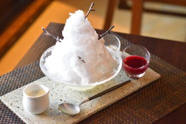 「かき氷のまち」佐原の夏スイーツ!甘酒&発酵ベリーのかき氷